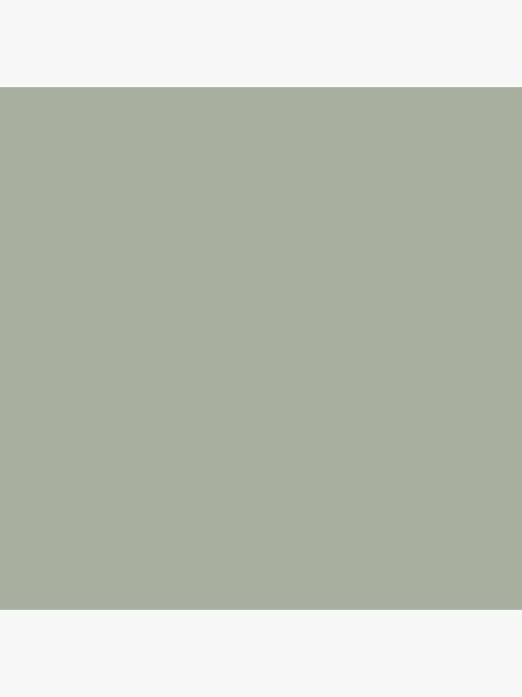 Desert Sage Grey Green Solid Color by podartist