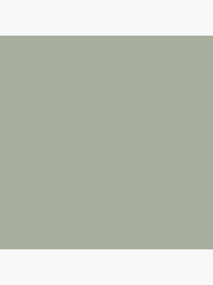 Desert Sage Grey Green Solid Color by podartist