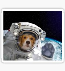 face dog astronaut Space Galaxy    Sticker