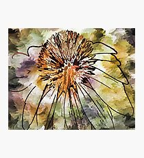 Abstract Floral 03 Photographic Print