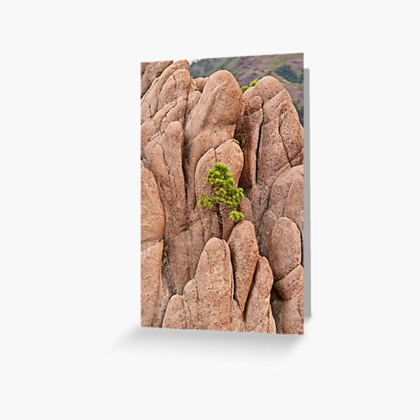 Tree and Geology Greeting Card