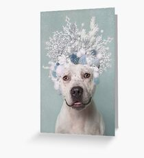 Flower Power, Icicle Greeting Card