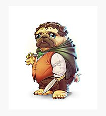 Frodo Puggins Photographic Print