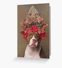 Flower Power, Chloe Greeting Card