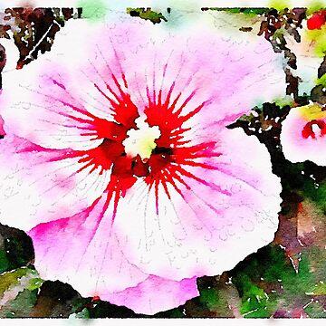 Pink Flower by elizabethamira
