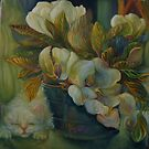 MAGNOLIAS, BLUE BUCKET, CAT NAP by Barbara Sparhawk