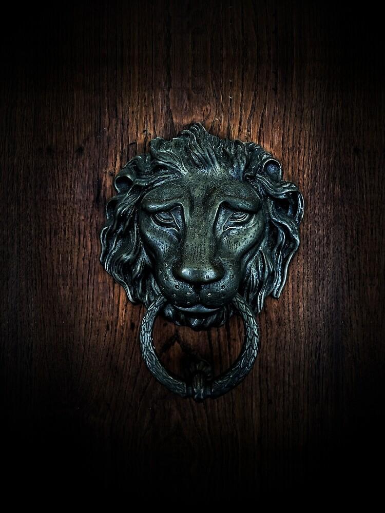 Vintage bronze lion door knocker by PLdesign