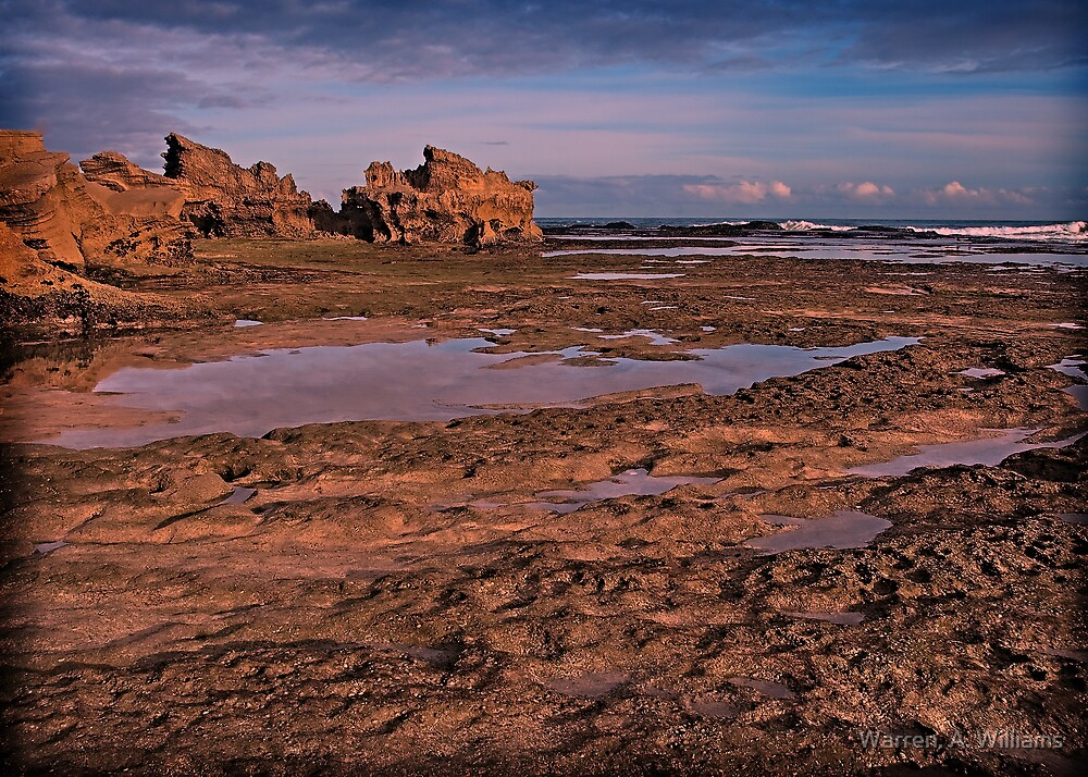 Low tide by Warren. A. Williams