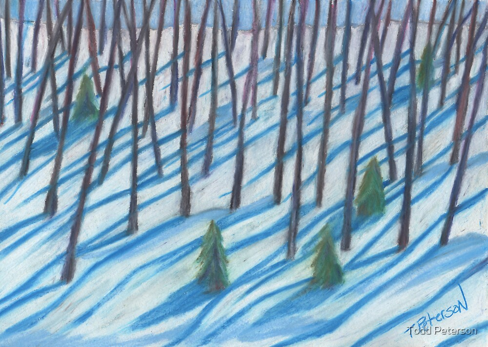 Winter's weaving by Todd Peterson