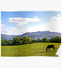 County Kerry Poster