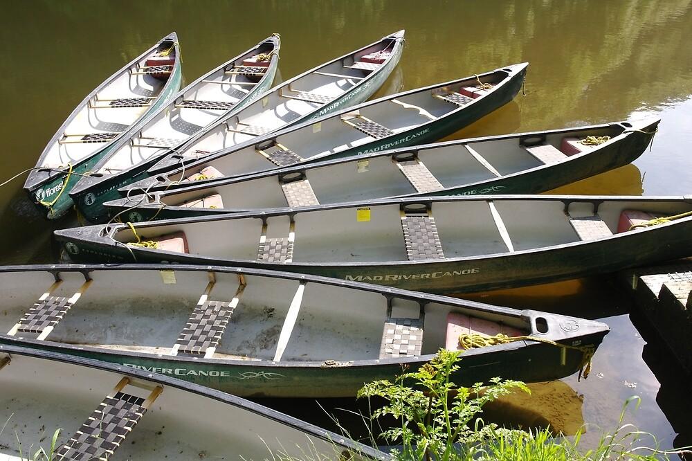 Boats on a Lake by PDTaylor