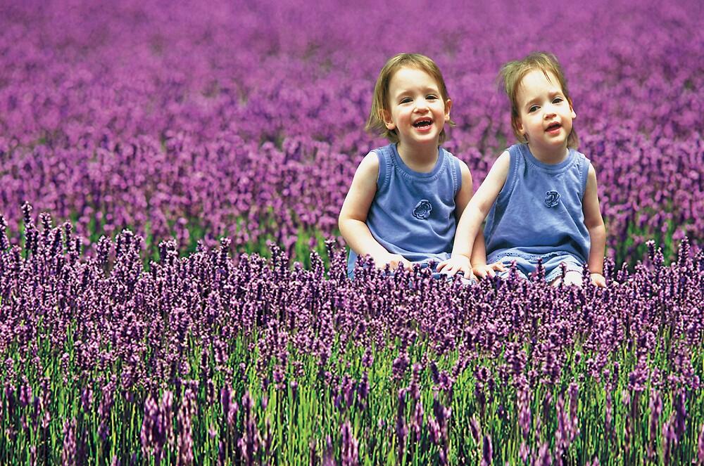 Lavender Girls by Glenn McLeary