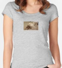 dog and crusty Women's Fitted Scoop T-Shirt