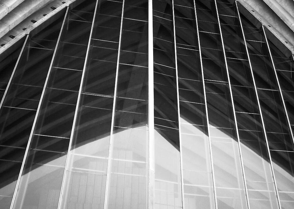 Sydney Opera House Reflection by abby hughes