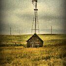 Prairie Pump by TingyWende