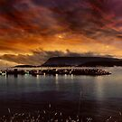 Ingonish Harbour by Riggzy