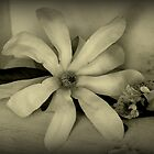 Spring Flowers - Still Life by Evita