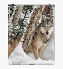 Watcher In The Woods iPad Case/Skin