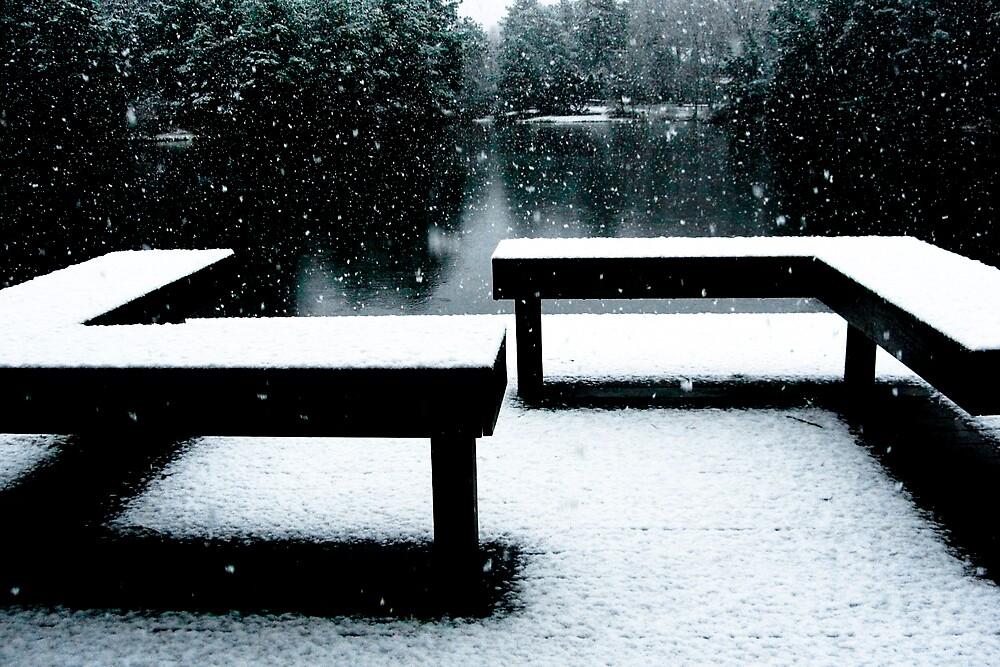 Benches by Brett Yoncak