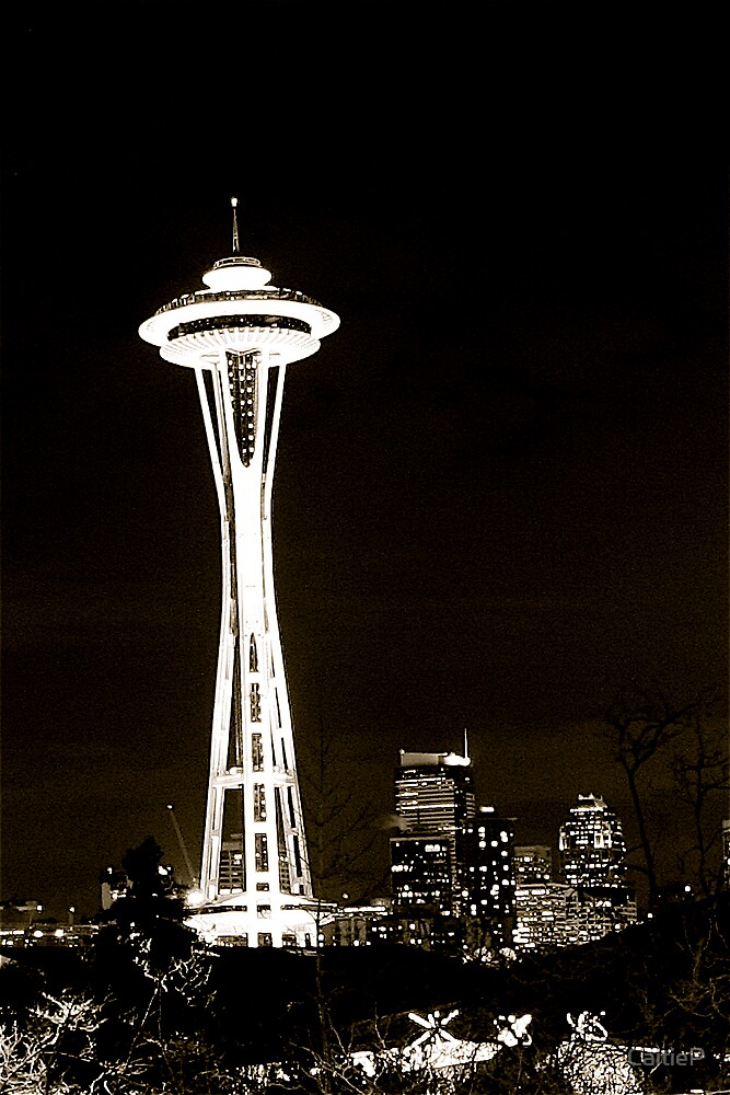 Space Needle at Night by CaitieP