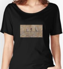Zebra Finches on Wire Fence Women's Relaxed Fit T-Shirt