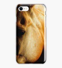 Golden horse iPhone Case/Skin