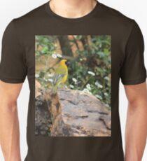 I walk with ... beauty T-Shirt