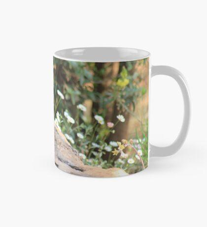 I walk with ... beauty Mug