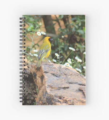I walk with ... beauty Spiral Notebook