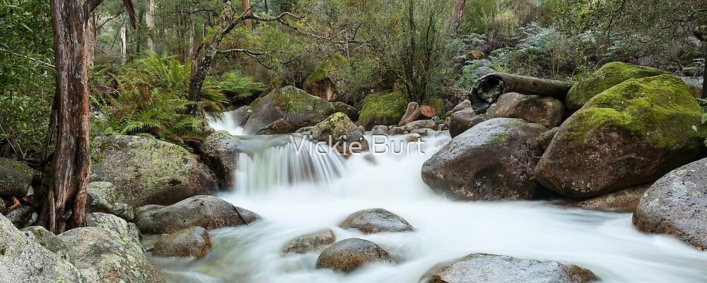 Mini Falls by Vickie Burt