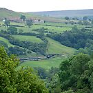 Esk Valley  by dougie1