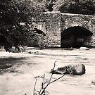 Fingle Bridge in Sepia by kernuak