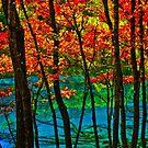 Autumn in Mirror Lake, Jiuzhaigou, China by Daniel H Chui