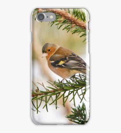 Chaffinch iPhone Case/Skin