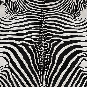 Zebra Skin Hide | Texture  by koovox