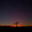 Bushfire Sky by Penny Kittel