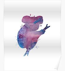 A koala Poster