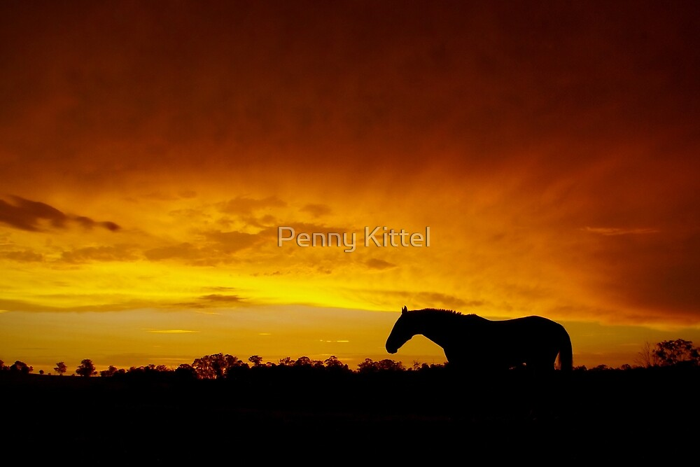 Rust Sky by Penny Kittel