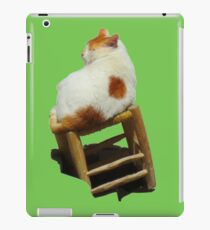 Cat playing perched iPad Case/Skin