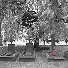 Graveyard by KBeyer