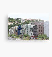 Lyon - Confluence Metal Print