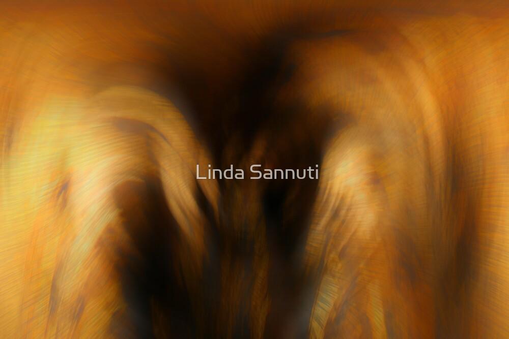 Angels Embrace by Linda Sannuti