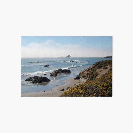 Fog Rolling Coastal Art Board Print