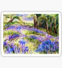 Bluebells by Dolfor Rd, Pen & Pencil Artwork Sticker