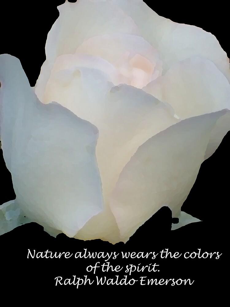 Nature Blush by Michelle BarlondSmith