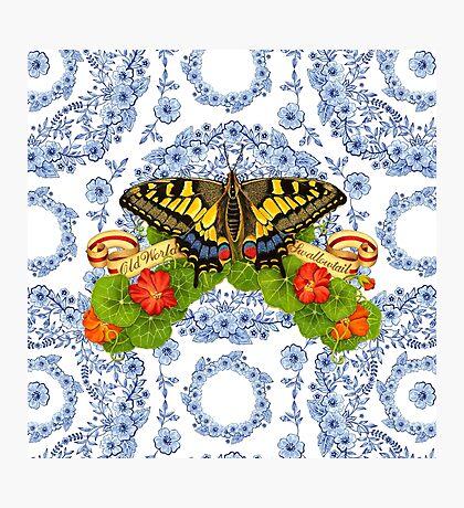 Old World Swallowtail Blue Rhapsody Photographic Print
