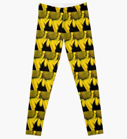 Melo Yellow Leggings