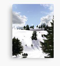 Winter landscape (IV) Canvas Print