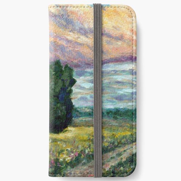 Road to Vzgliadnevo iPhone Wallet