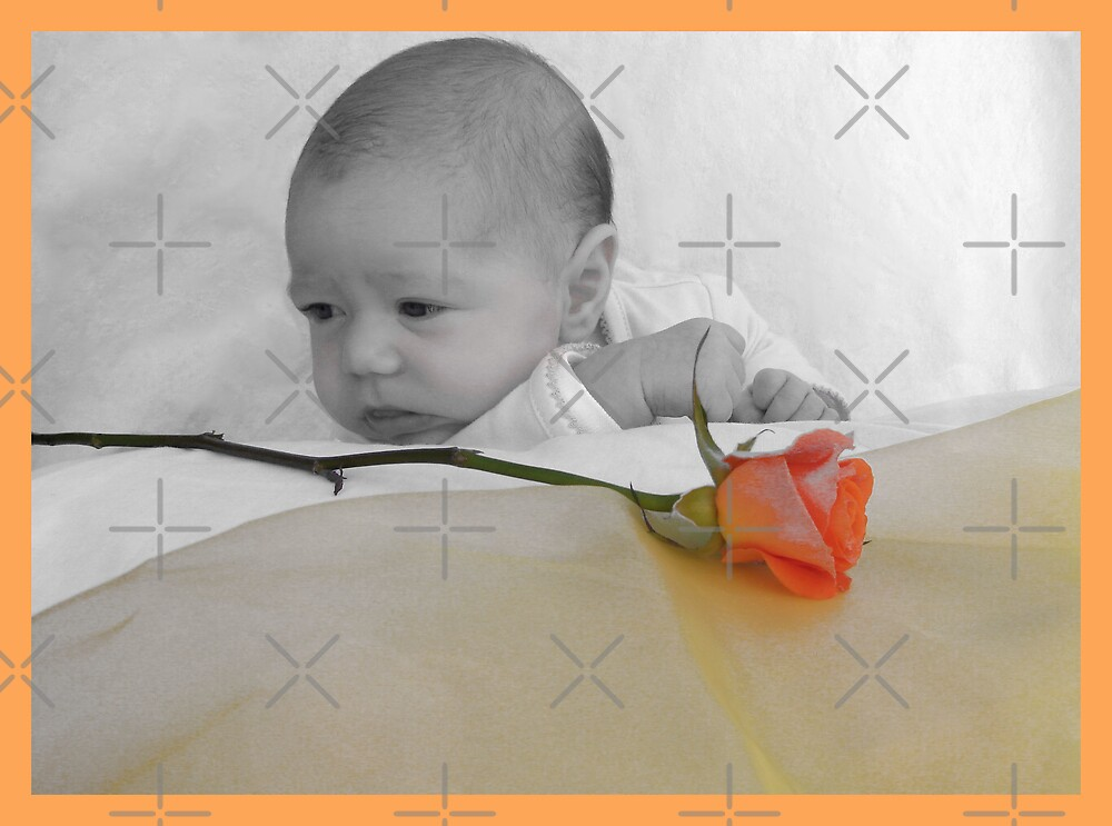 Baby and rose by Michelle *